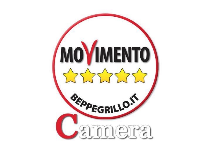 movimento-5-stelle-camera
